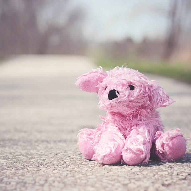 ตุ๊กตาสุนัข วาเลนไทน์ ตัวแทนของความรักน่ากอด