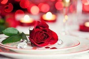 ดอกกุหลาบแทนความรัก