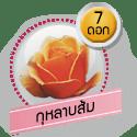 กุหลาบส้ม 7 ดอก