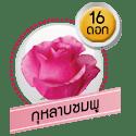 กุหลาบชมพู 16 ดอก