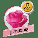 กุหลาบชมพู 17 ดอก