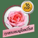 กุหลาบชมพูโอลด์โรส 16 ดอก