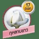 กุหลาบขาว 17 ดอก