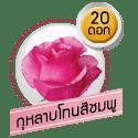 กุหลาบโทนสีชมพู 20 ดอก