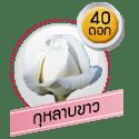 กุหลาบขาว 40 ดอก