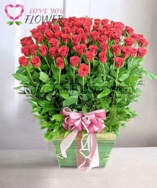 กระเช้าดอกไม้ Eglantina ดอกกุหลาบแดง