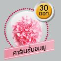 คาร์เนชั่นชมพู 30 ดอก