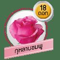กุหลาบชมพู 18 ดอก