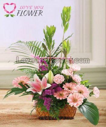 กระเช้าดอกไม้ Pitrel ดอกลิลลี่ ดอกเยอบีร่า
