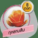 กุหลาบส้ม 8 ดอก