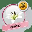 ลิลลี่ขาว 12 ดอก