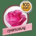 กุหลาบชมพู 100 ดอก