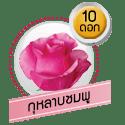 กุหลาบชมพู 10 ดอก