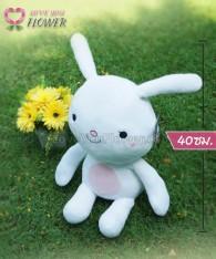 904_ตุ๊กตากระต่าย_HAYANG