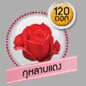 กุหลาบแดง 120 ดอก
