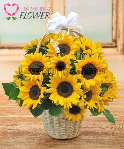 กระเช้าดอกไม้ Aliza ดอกทานตะวัน