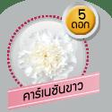 คาร์เนชันขาว 5 ดอก