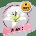 ลิลลี่ขาว 5 ดอก