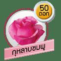 กุหลาบชมพู 50 ดอก