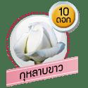 กุหลาบขาว 10 ดอก