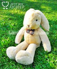 watermark_rabbit_01