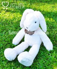 watermark_rabbit_02