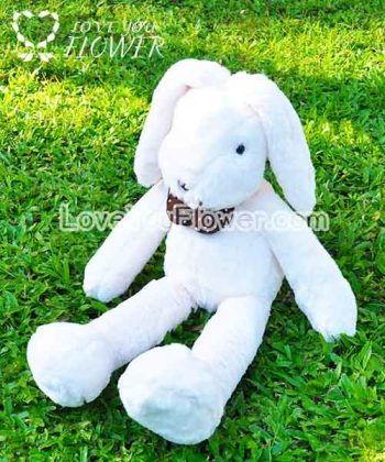 watermark_rabbit_02