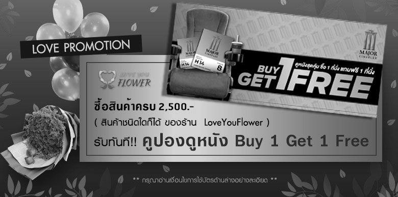 love_promotion_banner_web