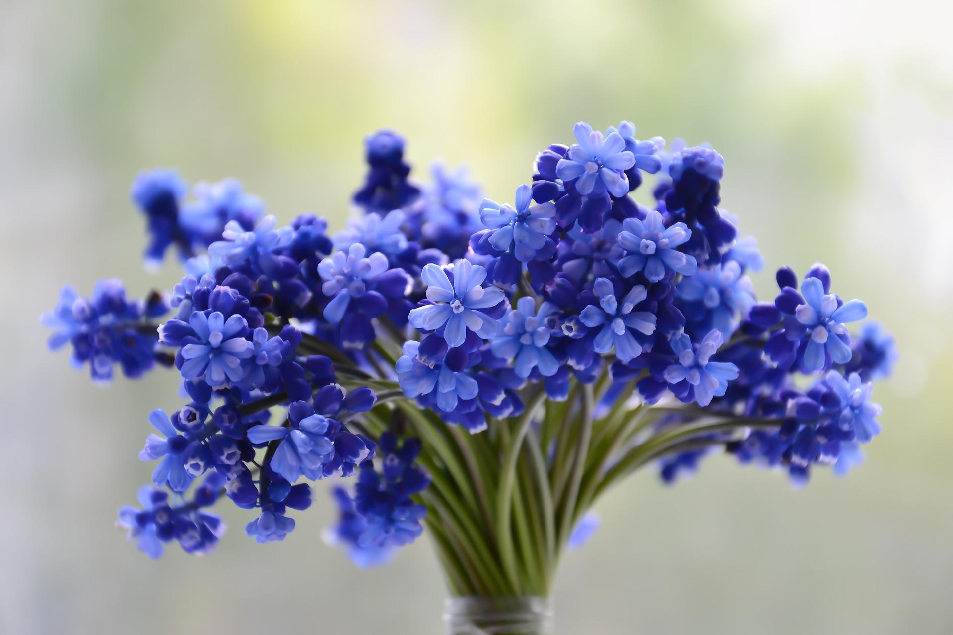 การจัดการดอกไม้สด