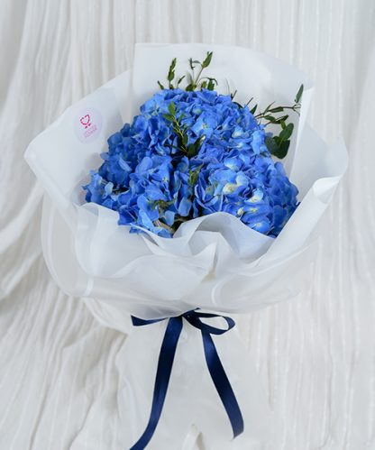 ช่อดอกไฮเดรนเยียสีฟ้า