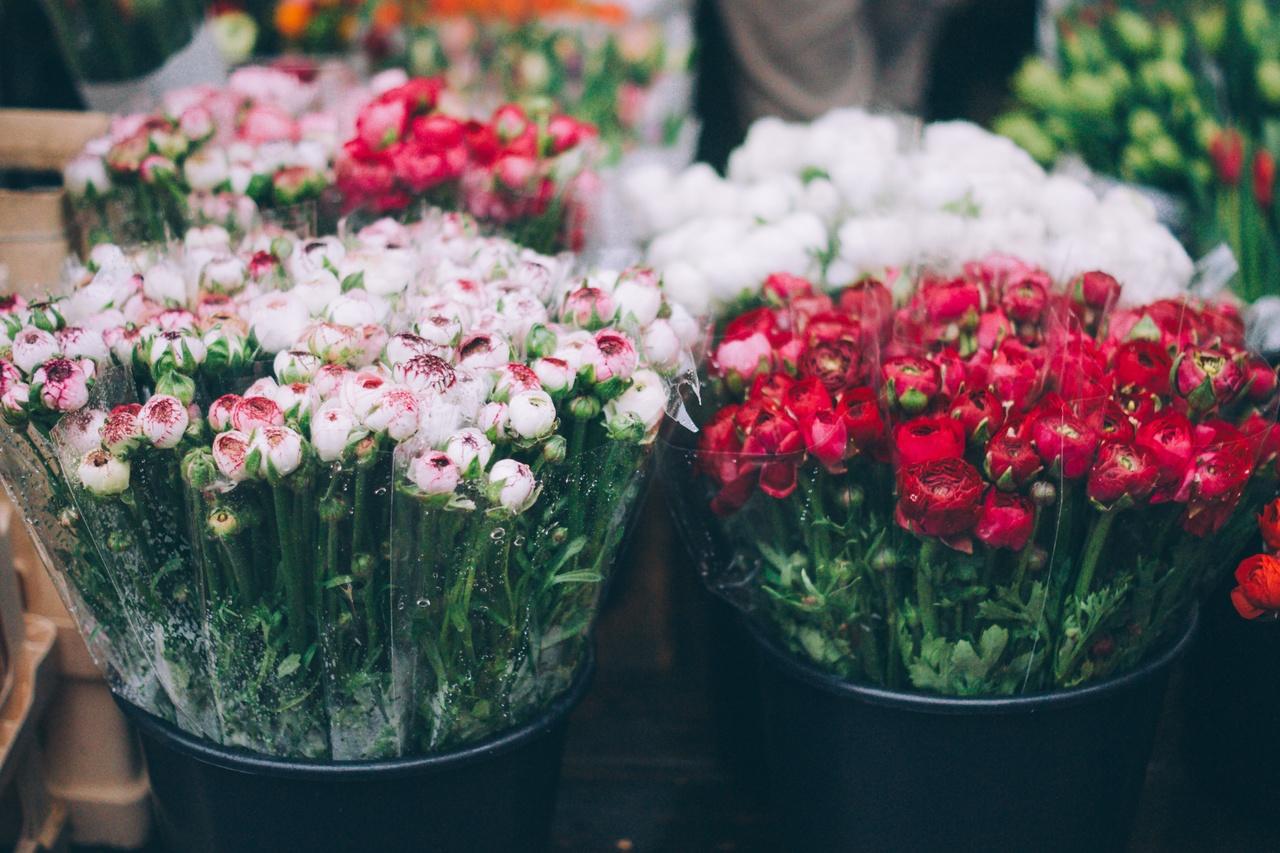 ดอกไม้คุณภาพ