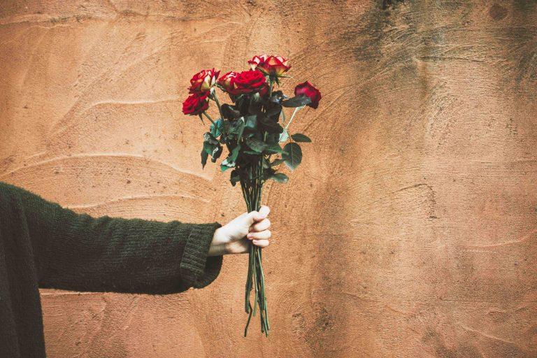 จำนวนดอกกุหลาบวาเลนไทน์ บอกแทนความในใจ
