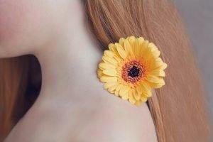 ดอกเยอบีร่า สีเหลืองสดใส ตัวแทนของวัยหนุ่มสาว