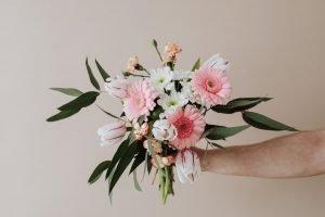 คนถือช่อดอกไม้ประกอบด้วยเยอบีร่าสีชมพู สีขาว และดอกทิวลิป