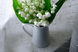 ดอกลิลลี่ ออฟ เดอะ วัลเลย์จัดเป็นช่ออยู่ในแจกันสีขาว